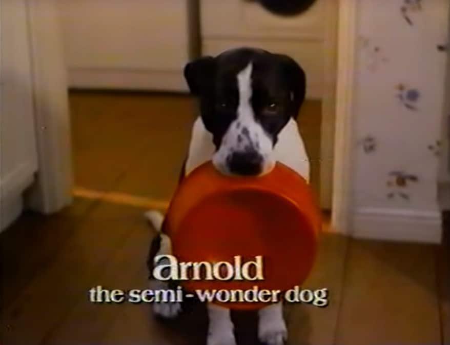 Life goes on serie vroeger arnold hond